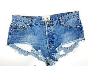 THE SCAVENGER COLLECTION: Women's One Teaspoon Rollers Denim Shorts Size 30