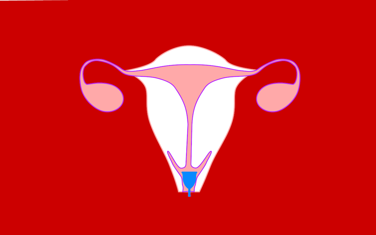 4 things you should know about your cervix before using a ... - photo#24