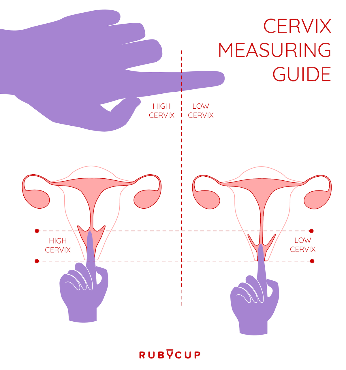 Measure cervix position menstrual cup
