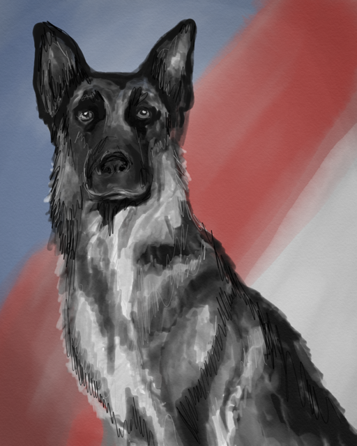 An Officer's Best Friend Art