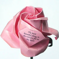TWISTED LA BELLA ROSA STANDARD MESSAGE ROSE