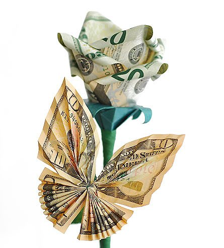 MONEY BUTTERFLY