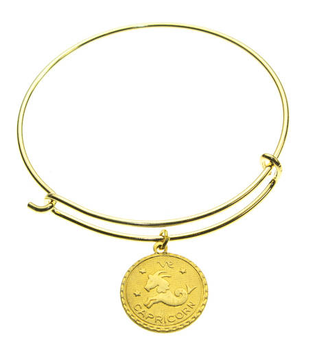 Vintage Capricorn Coin Zodiac Wire Bangle
