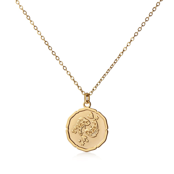Organic Shiny Pisces Medallion Zodiac Necklace