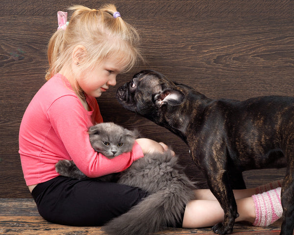 Household Pets Allergy: How to Cope if You Are Allergic to Dogs and Cats