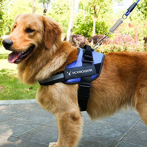 Adjustable Soft Outdoor Vest Pet Harness Leash