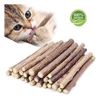 Catnip Sticks Teeth Cleaning Chew Toy
