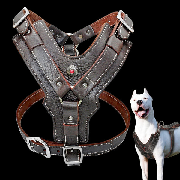 Adjustable Genuine Leather Dog Training Harness With Quick Control Handle
