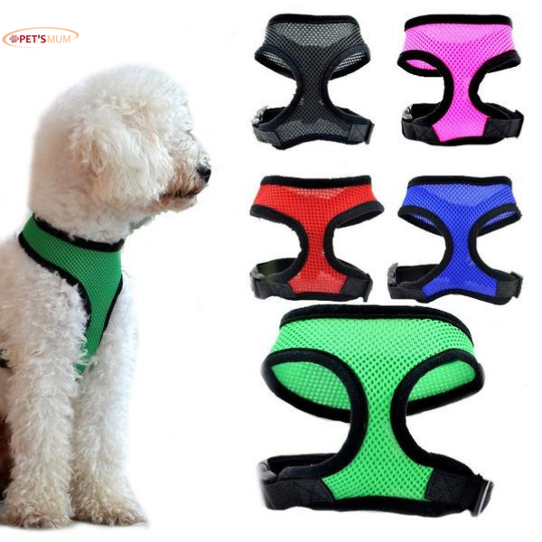 Premium Dog Collar Harness for Small Dogs