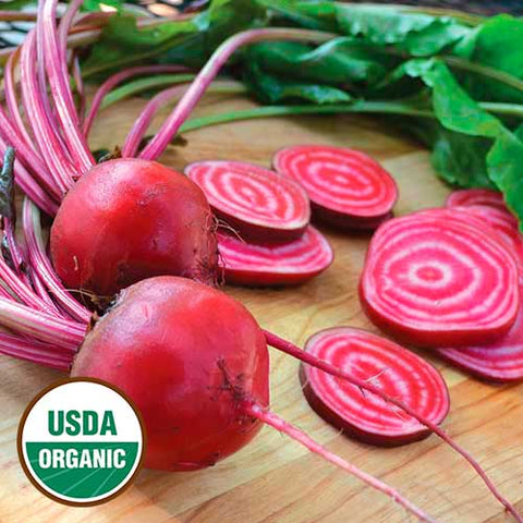 Seed Savers Exchange - Chioggia Beet