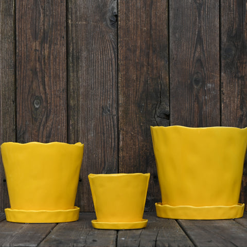 Yellow Tika Container with Saucer