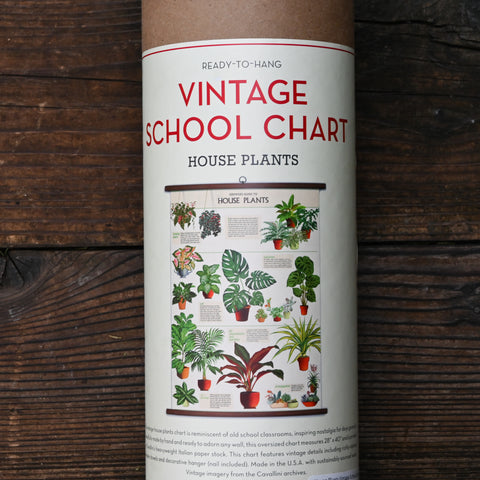 House Plants Vintage School Chart