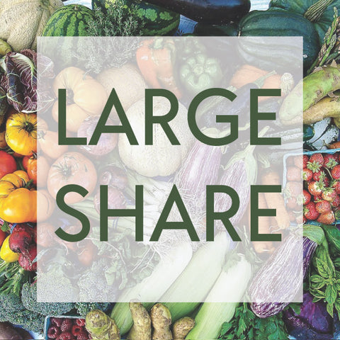 2021 Large CSA Share Now Available