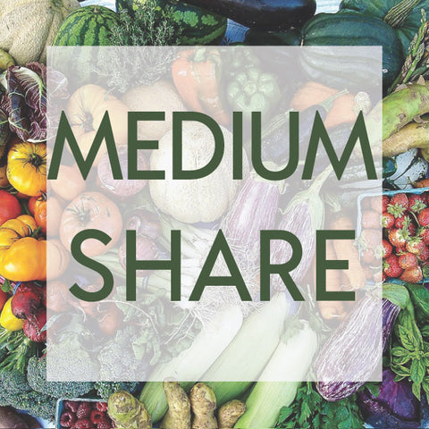 *Sold Out - 2020 Medium CSA Share Now Available