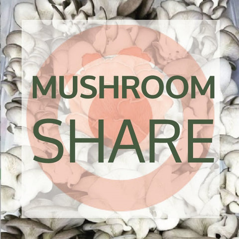 2020 Mushroom Share Add On for Target Employees