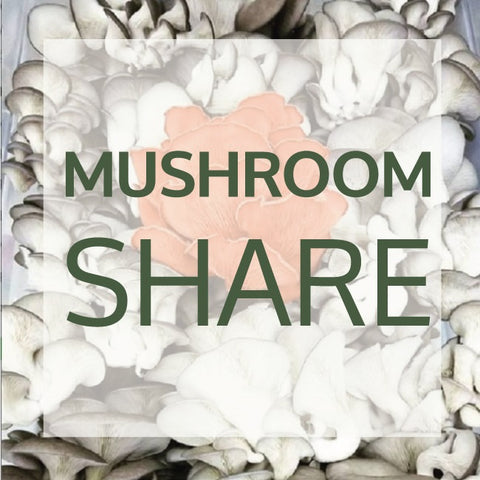 2020 Mushroom Share Add-On
