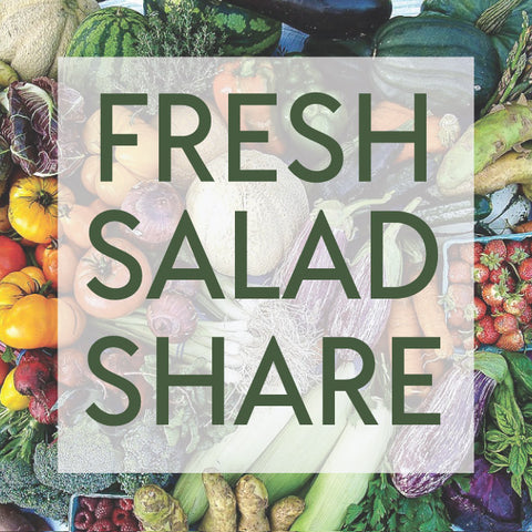 Fresh Salad Share CSA