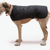 Danish Design Black Harness Dog Coat