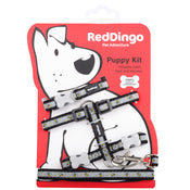 Red Dingo Puppy Kit Collar, Lead and Harness Set