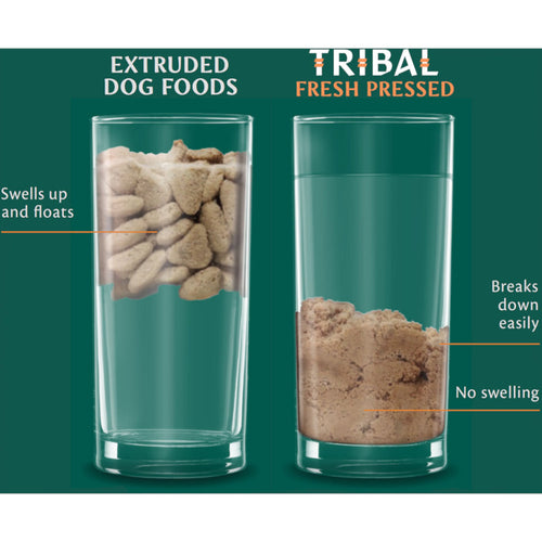 Tribal Fresh-Pressed Senior/Light Dog Food Turkey