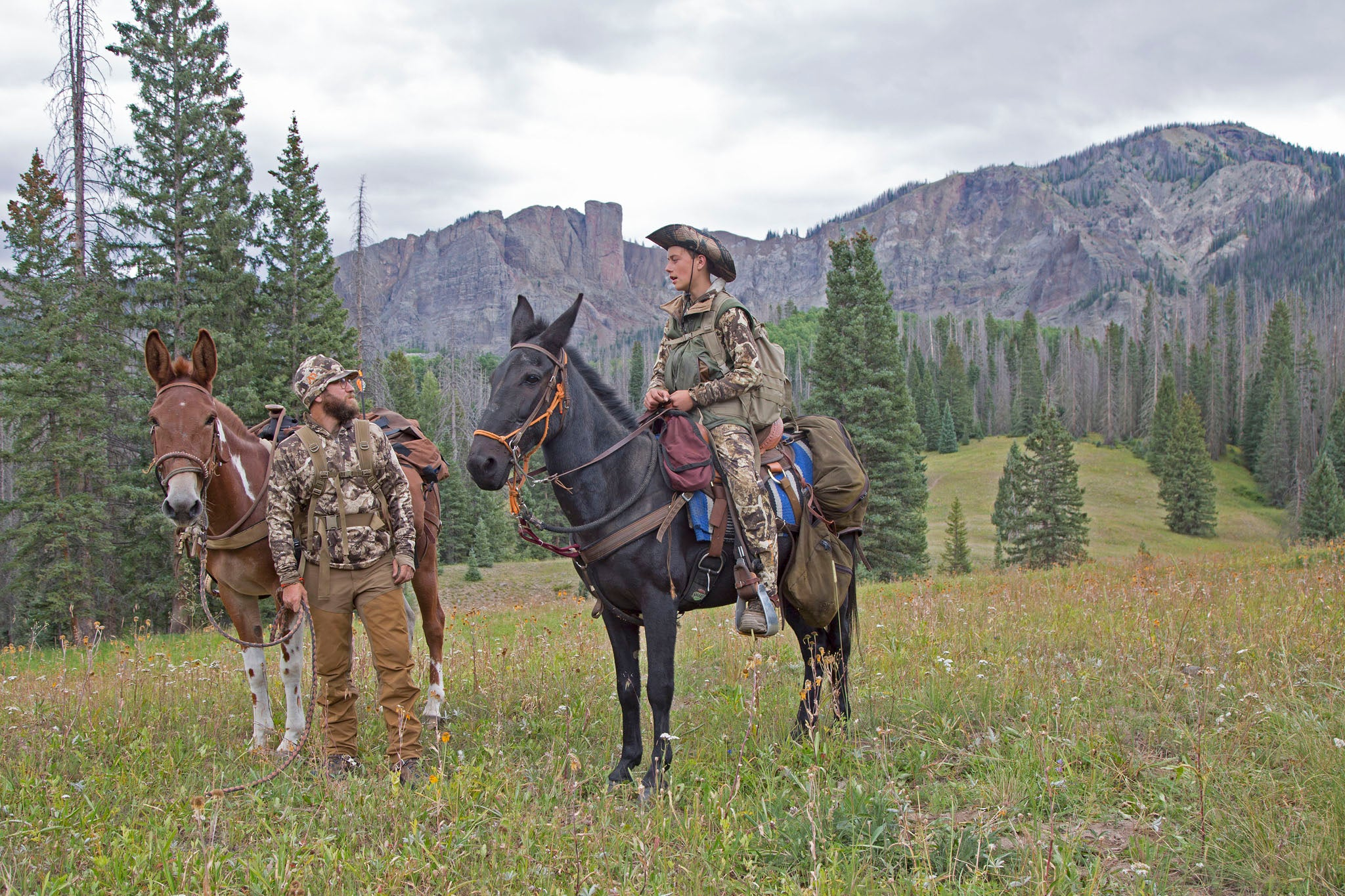 Elk-Pedition: An Arkansan's First Wapiti Hunt