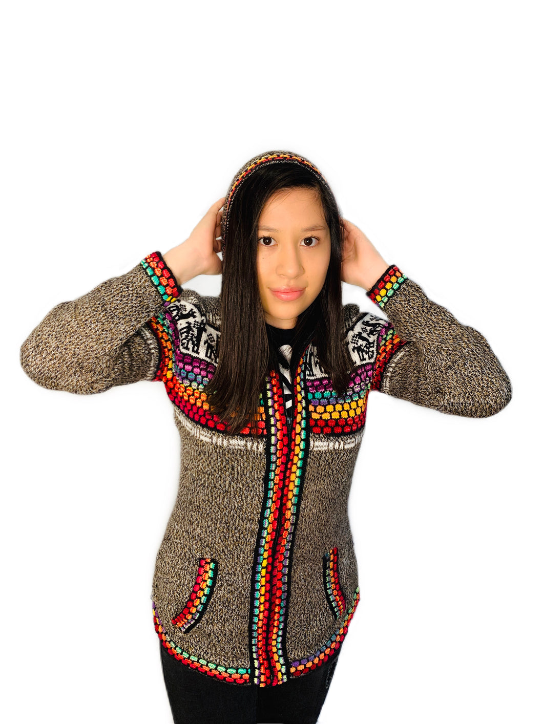 Alpaca Pattern Rainbow Sweater with a Hood and Front Pockets