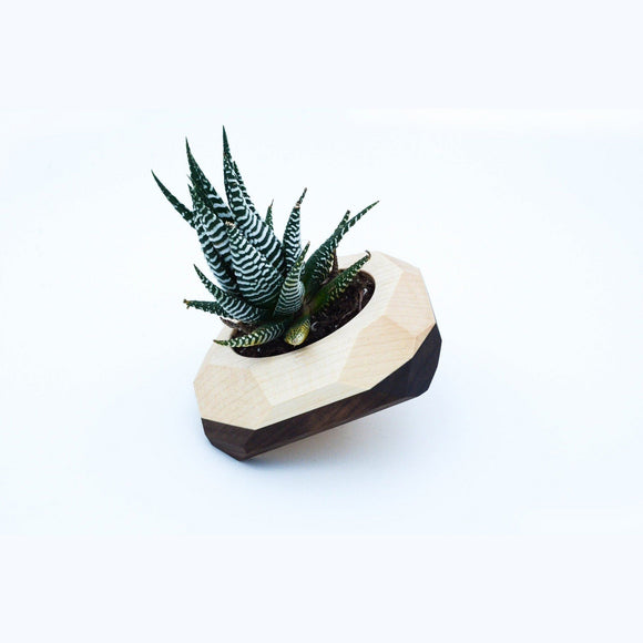 Walnut & Maple Geometric Planter - Hailey Home