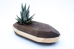 Walnut & Maple Large Geometric Planter - Hailey Home