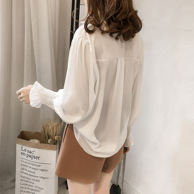 2019 spring new Korean embroidery chiffon shirt female long-sleeved shirt Lantern sleeve bottoming shirt