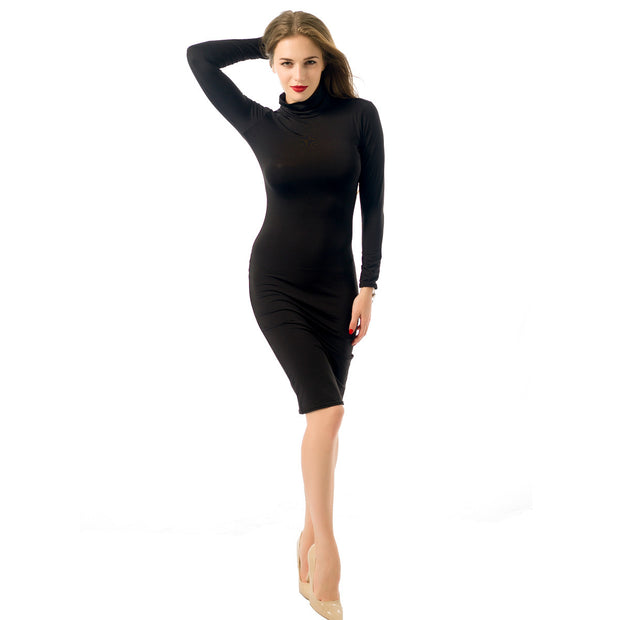 Turtleneck Long-sleeve Plain Color Bodycon Dress