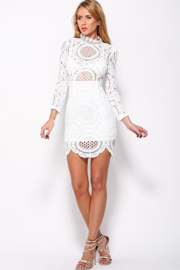 Long-sleeve Crochet Sheer Lace Bodycon Dress