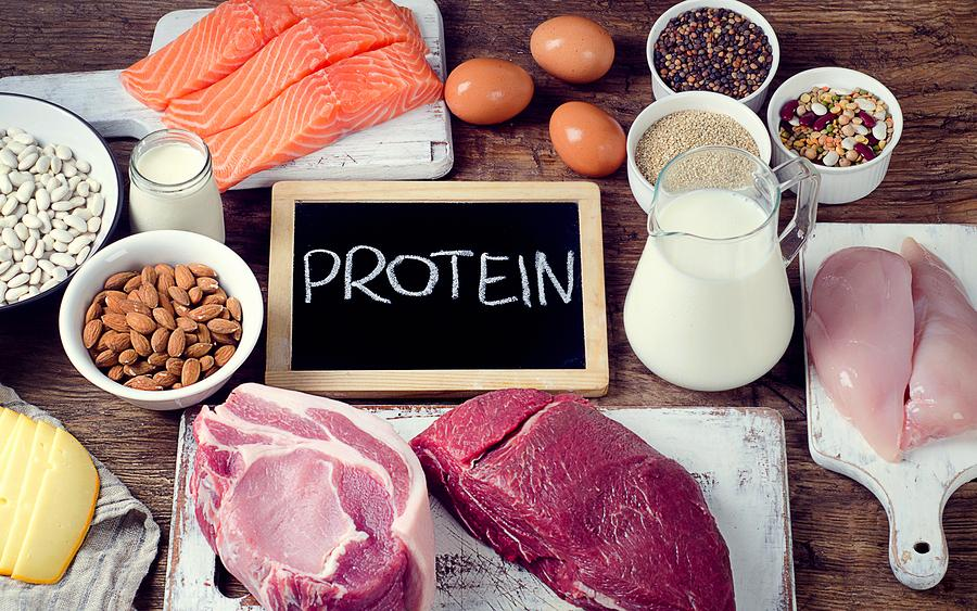 Lab to Life Series: 4 Tips to Distinguish Protein Quality