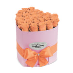 Love Pink Box & Peach Forever Roses