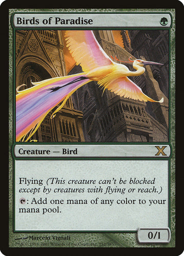 Birds of Paradise - Tenth Edition (10th)