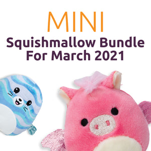 Squishmallow Mini Bundle for March 2021 for Learning Express