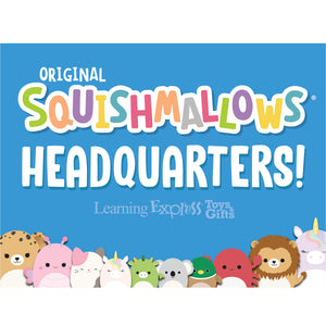 """Squishmallow Headquarters"" Signs for Learning Express"