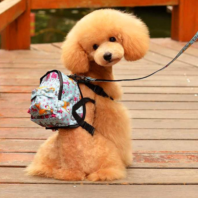 Pet Backpack and Leash Set Printed Colorful Dot Pattern