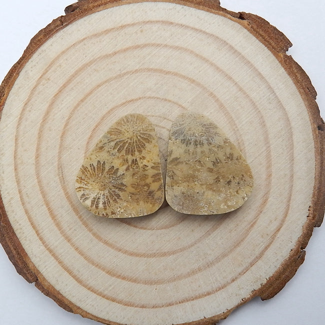 Natural Indonesian Fossil Coral Cabochon Pair, 20x17x5mm, 4.4g - MyGemGarden