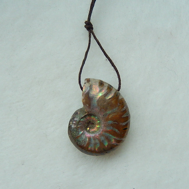 Shimmer Ammonite Fossil Drilled Pendant Beads For DIY Necklace 27x21x11mm, 9.1g - MyGemGarden