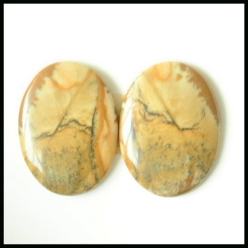 Natural US Biggs Picture Jasper Gemstone Cabochon Pair 20x15x3mm,3.6g - MyGemGarden