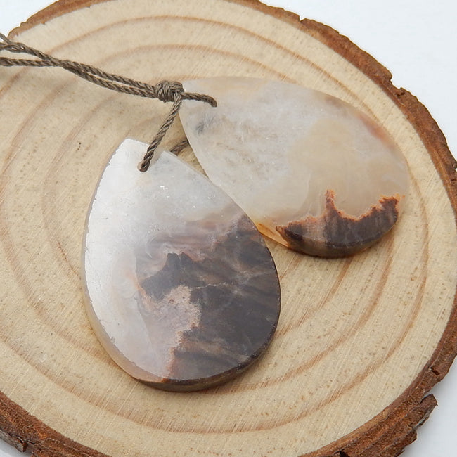 Natural Mushroom Jasper Teardrop Earrings Pair, stone for Earrings making, 30x21x3mm, 7.88g - MyGemGarden