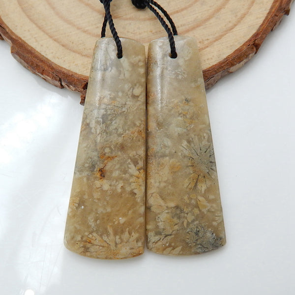 Natural Indonesian Fossil Coral Earrings Pair, stone for Earrings making, 40x15x4mm, 8.6g - MyGemGarden
