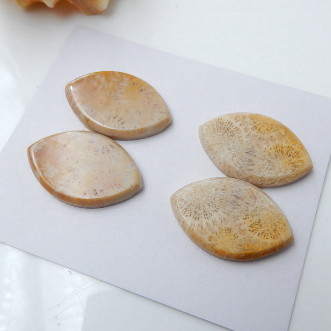 2 Pairs Natural Indonesian Fossil Coral Marquise Gemstone Cabochons, 25x16x3mm, 11.8g - MyGemGarden