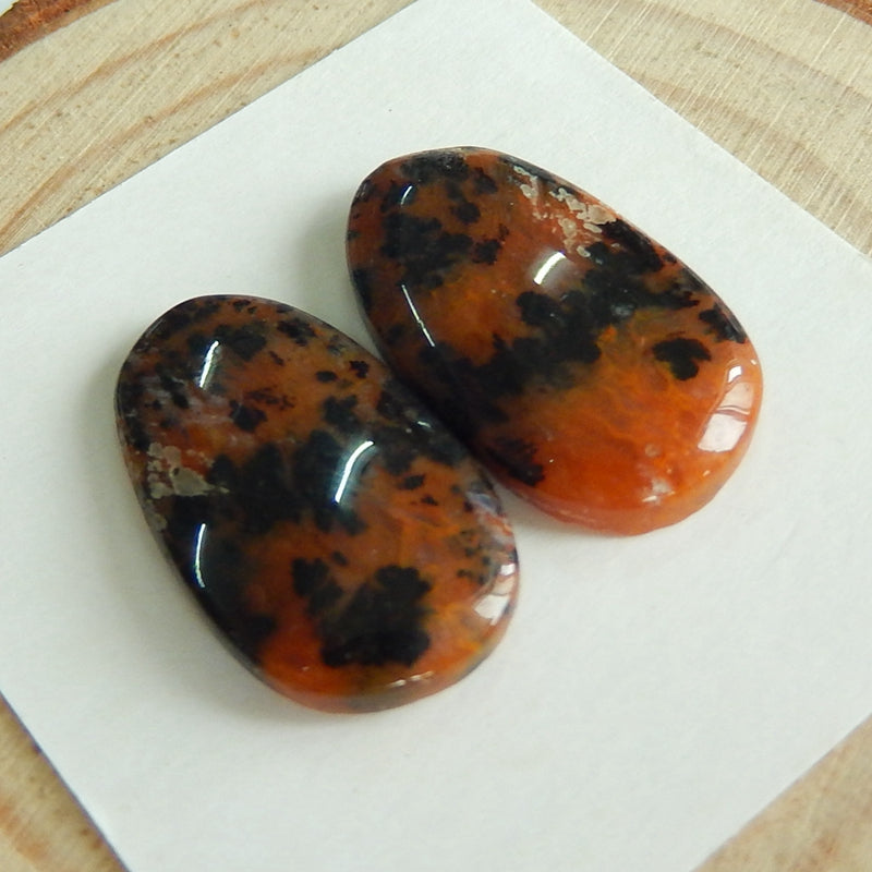 Natural petrified wood  Gemstone Cabochon Pair, 21x12x4mm, 3.7g - MyGemGarden