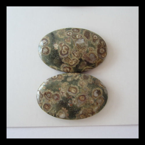 2 Pairs Frog's Eye Cabochon, 30x20x5mm,17.5g($5 Each) - MyGemGarden