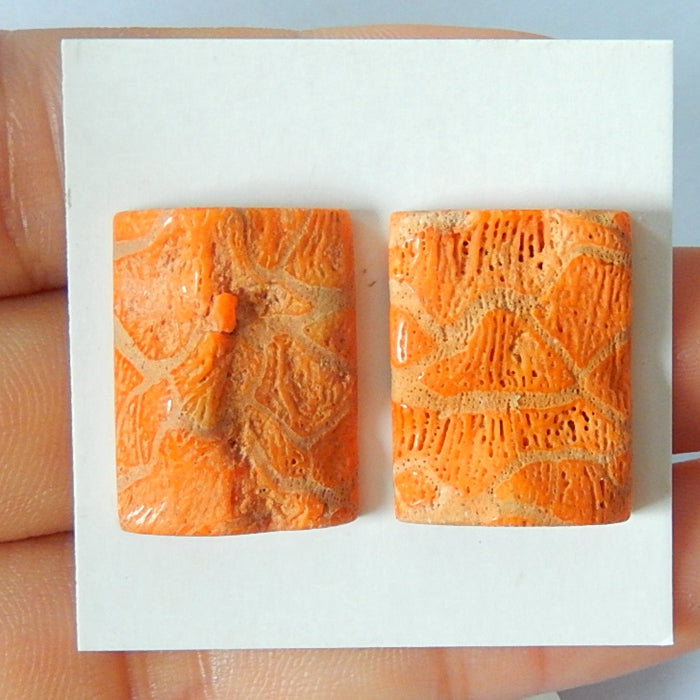 Orange coral Cabochon Pair 21x16x7mm,5.2g - MyGemGarden