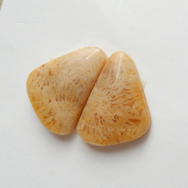 Natural Indonesian Fossil Coral Gemstone Cabochon Pair, 15x10x3mm, 1.6g - MyGemGarden