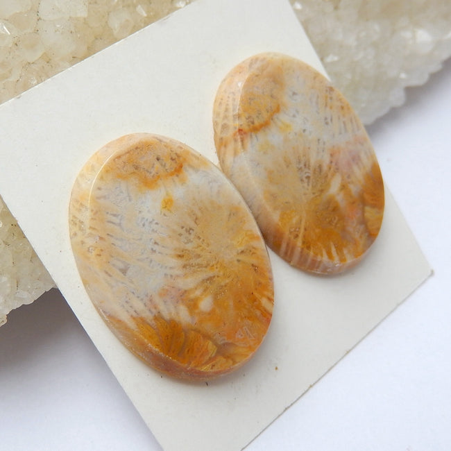 Natural Indonesian Fossil Coral Oval Gemstone Cabochon Pair, 25x18x3mm, 6.1g - MyGemGarden