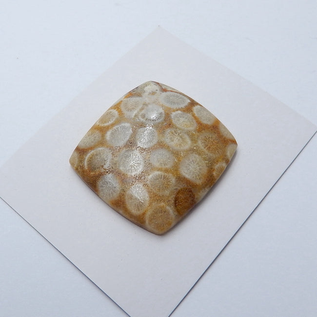 Natural Indonesian Fossil Coral Gemstone Cabochon, 35x32x6mm, 11.95g - MyGemGarden