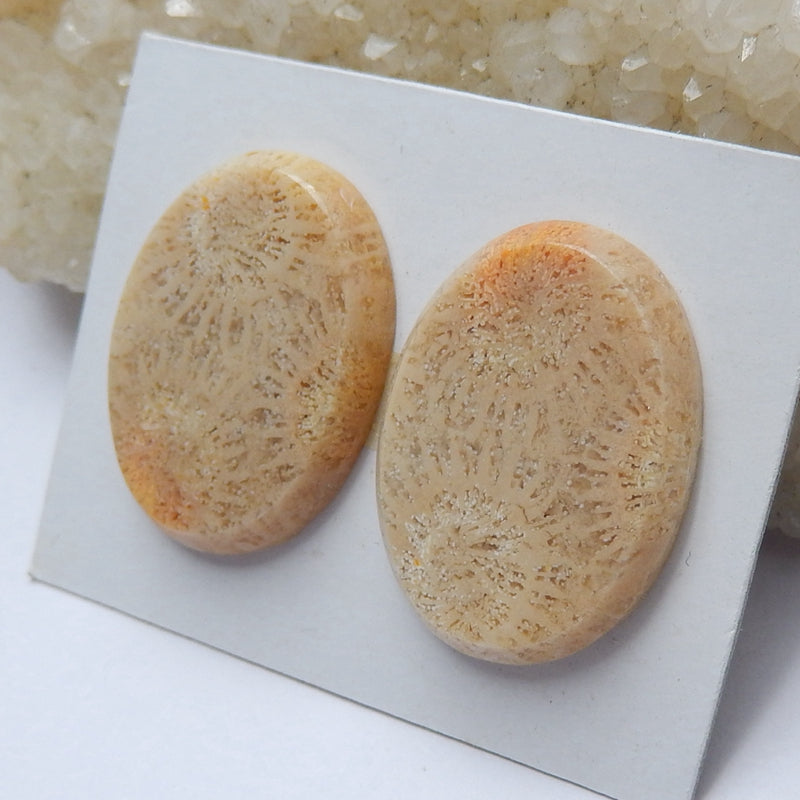 Natural Indonesian Fossil Coral Oval Gemstone Cabochon pair, 21x19x4mm, 7.5g - MyGemGarden